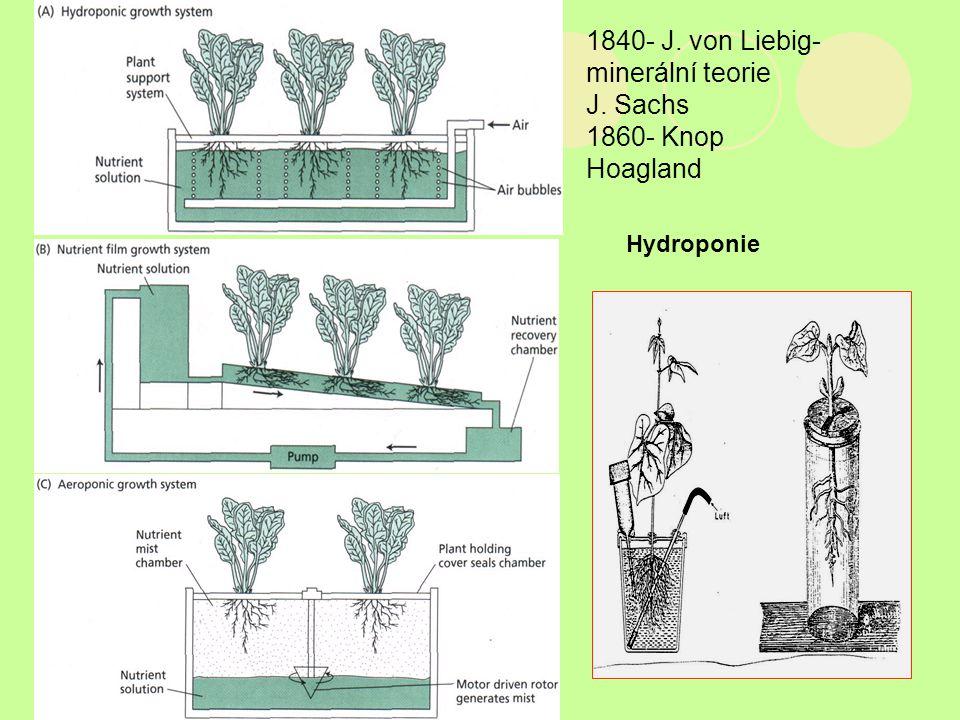1840- J. von Liebig-minerální teorie J. Sachs 1860- Knop Hoagland