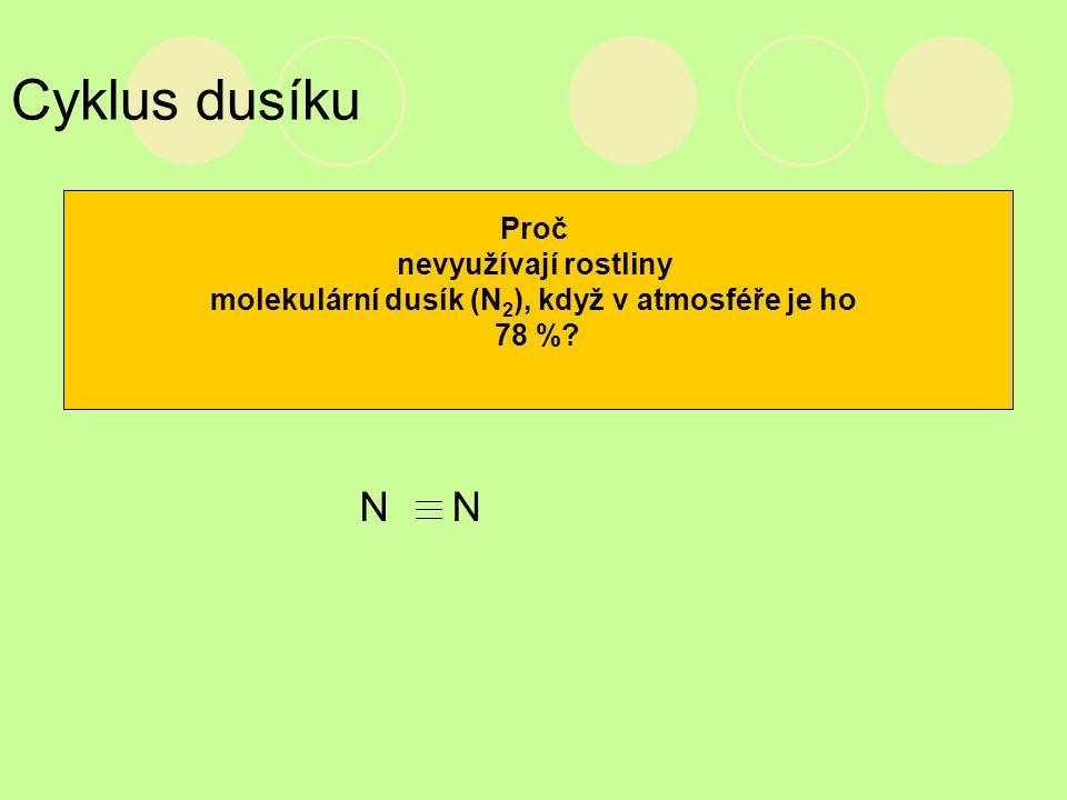 molekulární dusík (N2), když v atmosféře je ho