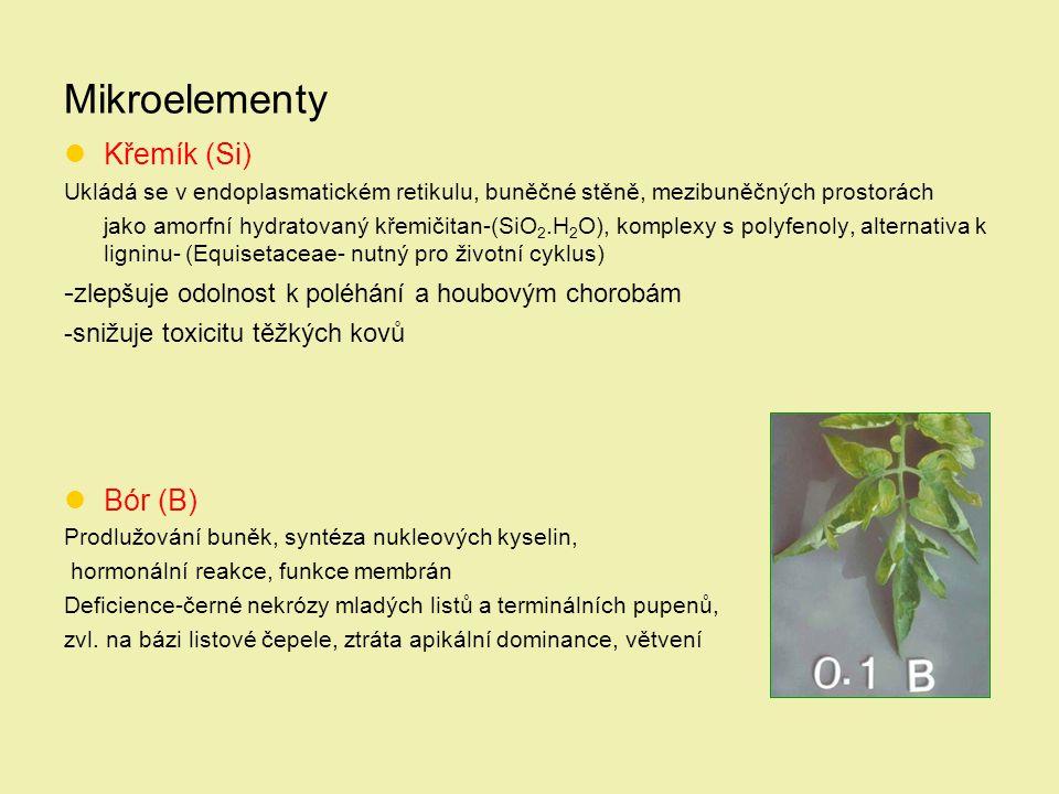 Mikroelementy Křemík (Si)
