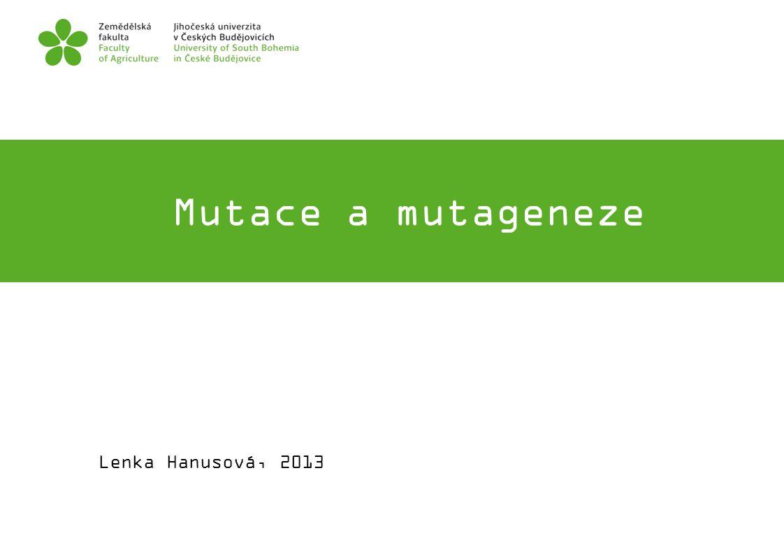 Mutace a mutageneze FOTO Lenka Hanusová, 2013