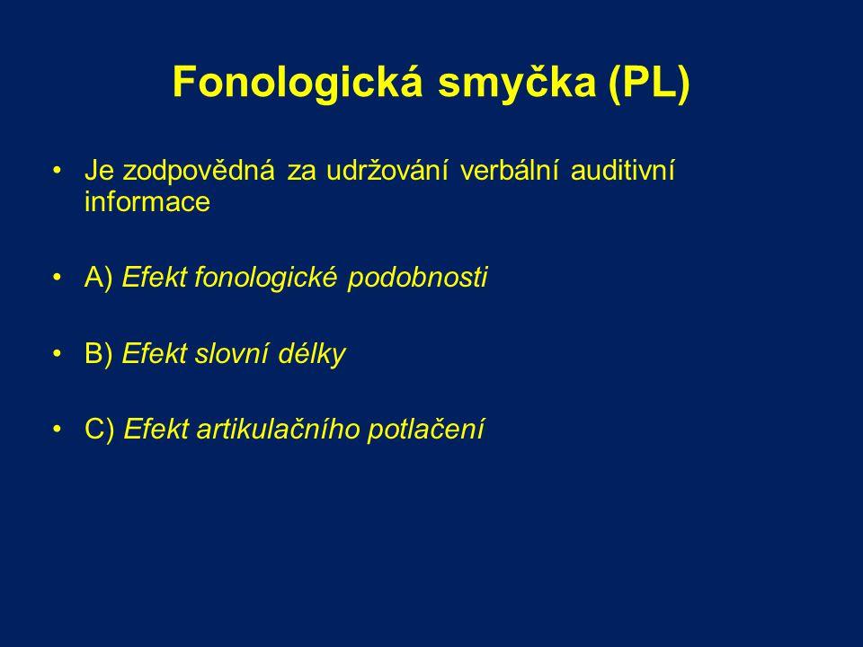 Fonologická smyčka (PL)