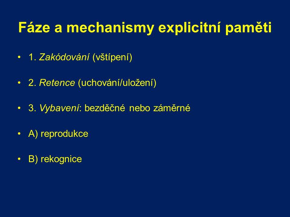 Fáze a mechanismy explicitní paměti
