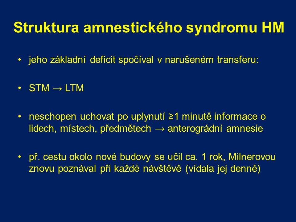 Struktura amnestického syndromu HM