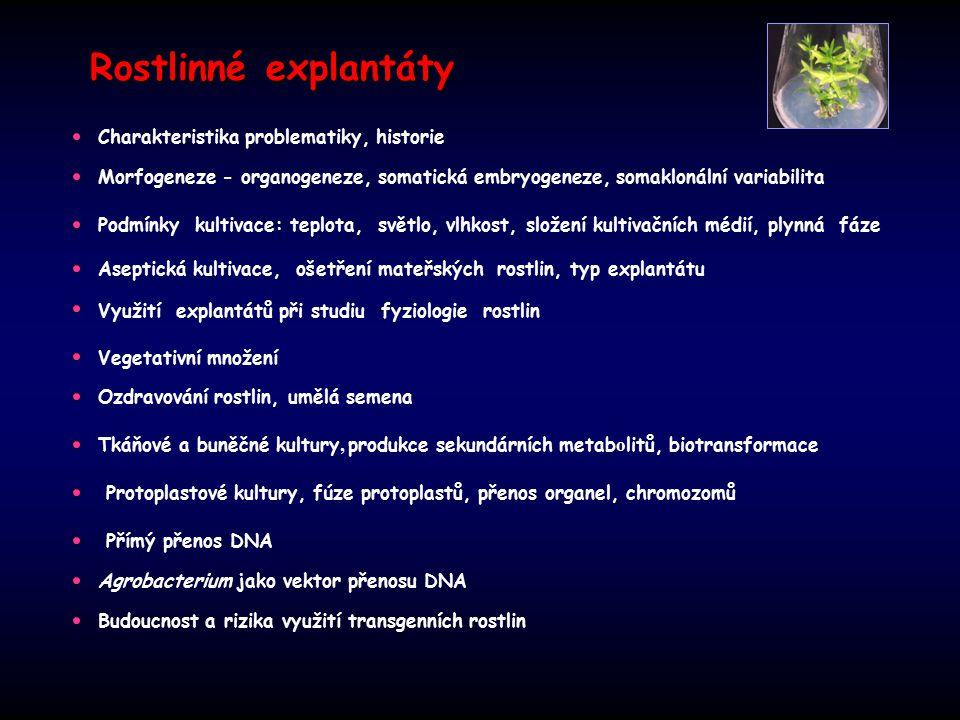 Rostlinné explantáty Charakteristika problematiky, historie