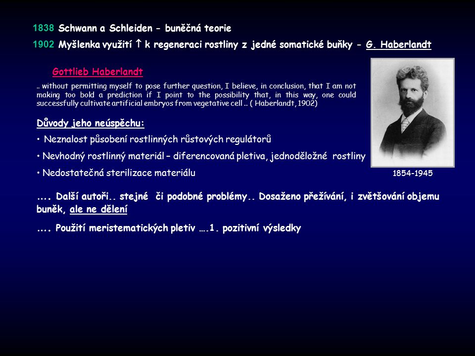 …. Použití meristematických pletiv ….1. pozitivní výsledky