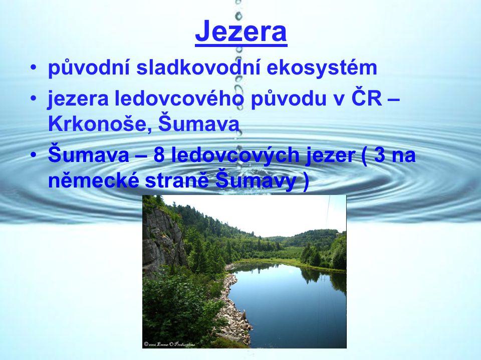 Jezera původní sladkovodní ekosystém
