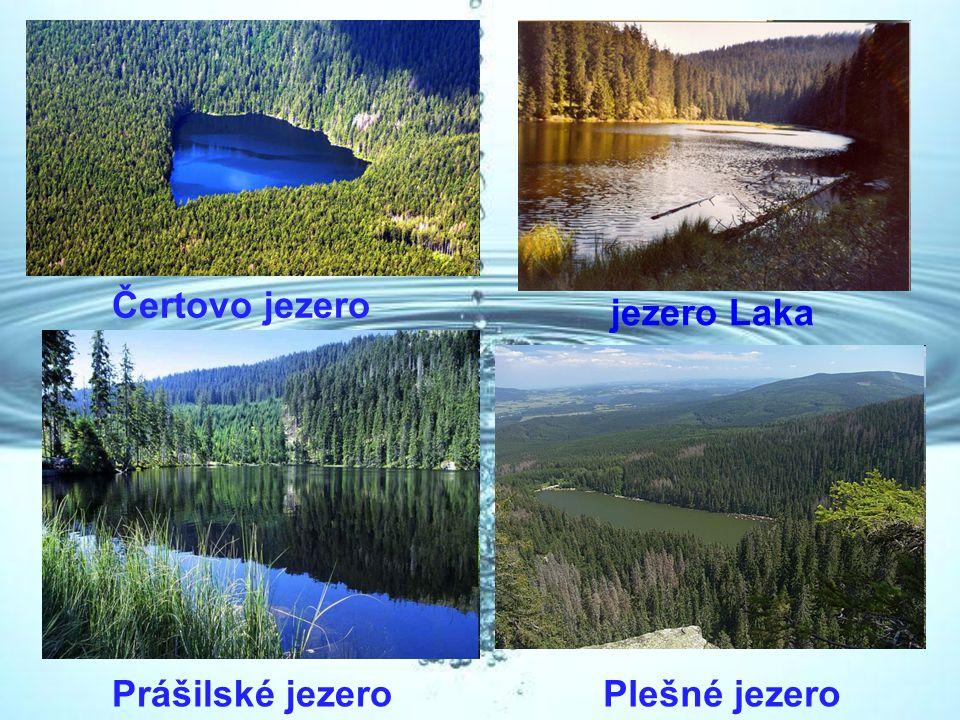 Čertovo jezero jezero Laka Prášilské jezero Plešné jezero