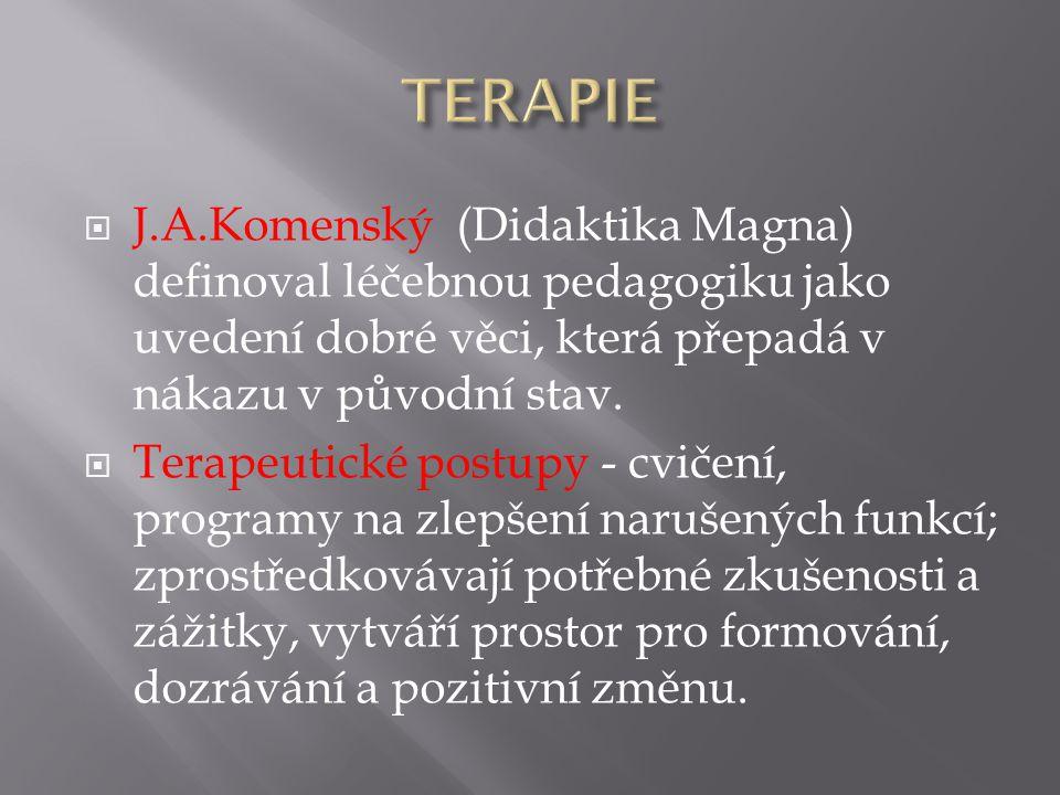 TERAPIE J.A.Komenský (Didaktika Magna) definoval léčebnou pedagogiku jako uvedení dobré věci, která přepadá v nákazu v původní stav.