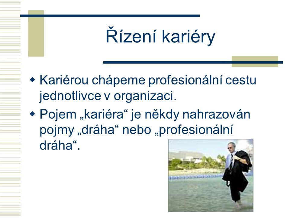 Řízení kariéry Kariérou chápeme profesionální cestu jednotlivce v organizaci.