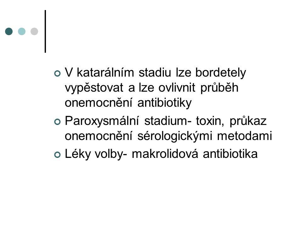 V katarálním stadiu lze bordetely vypěstovat a lze ovlivnit průběh onemocnění antibiotiky