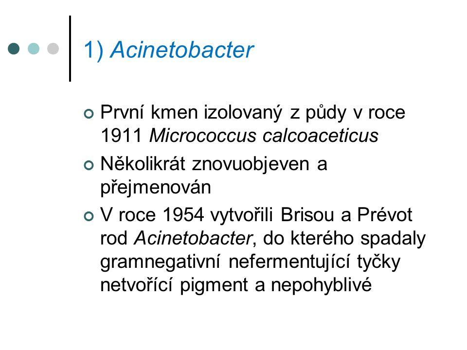 1) Acinetobacter První kmen izolovaný z půdy v roce 1911 Micrococcus calcoaceticus. Několikrát znovuobjeven a přejmenován.