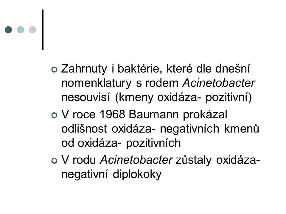 V rodu Acinetobacter zůstaly oxidáza- negativní diplokoky
