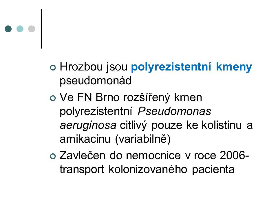 Hrozbou jsou polyrezistentní kmeny pseudomonád