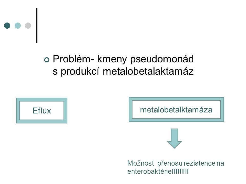 Problém- kmeny pseudomonád s produkcí metalobetalaktamáz