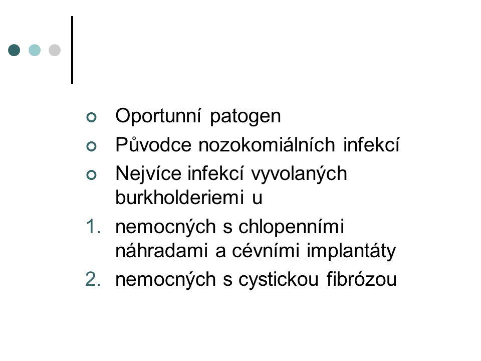 Oportunní patogen Původce nozokomiálních infekcí. Nejvíce infekcí vyvolaných burkholderiemi u.