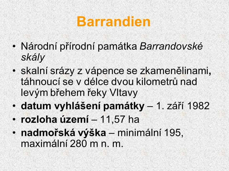 Barrandien Národní přírodní památka Barrandovské skály