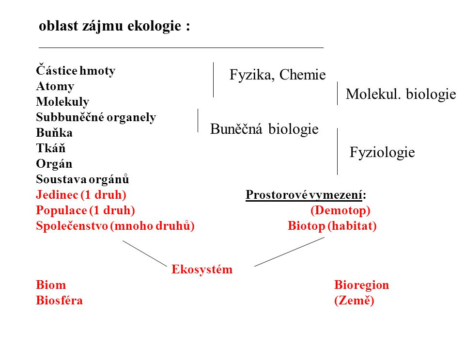 Fyzika, Chemie Molekul. biologie Buněčná biologie Fyziologie