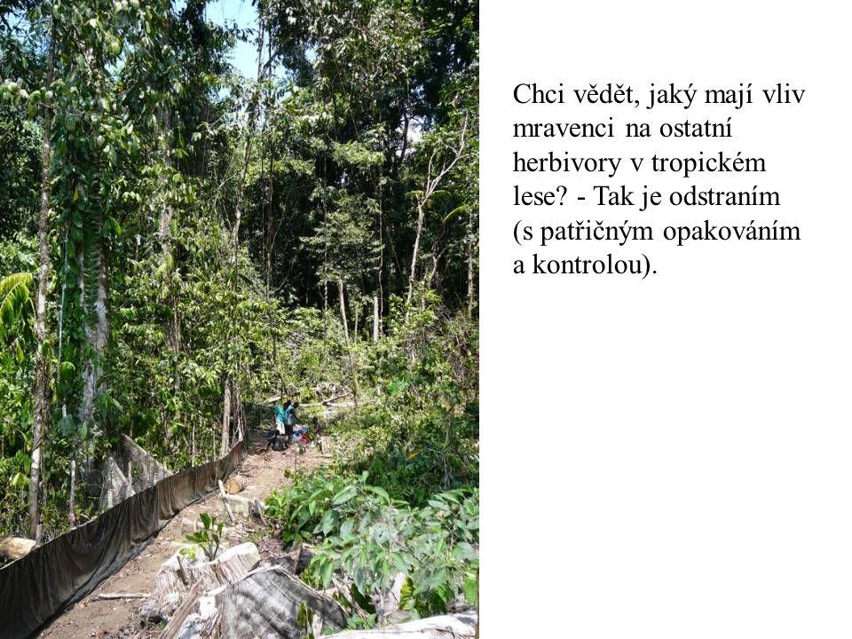 Chci vědět, jaký mají vliv mravenci na ostatní herbivory v tropickém lese.