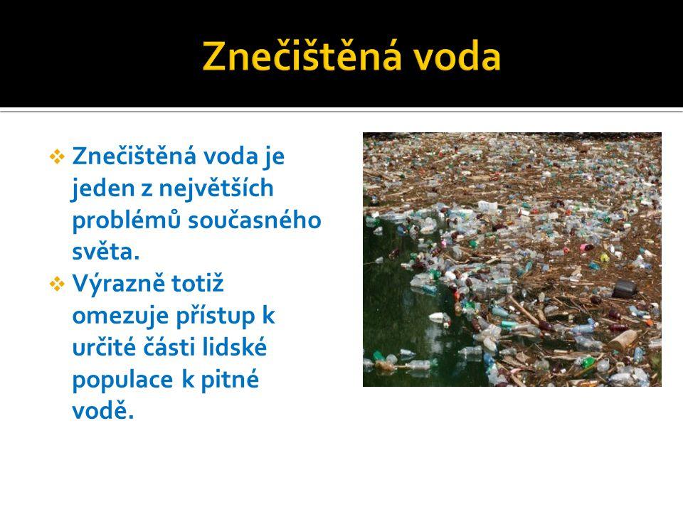 Znečištěná voda Znečištěná voda je jeden z největších problémů současného světa.