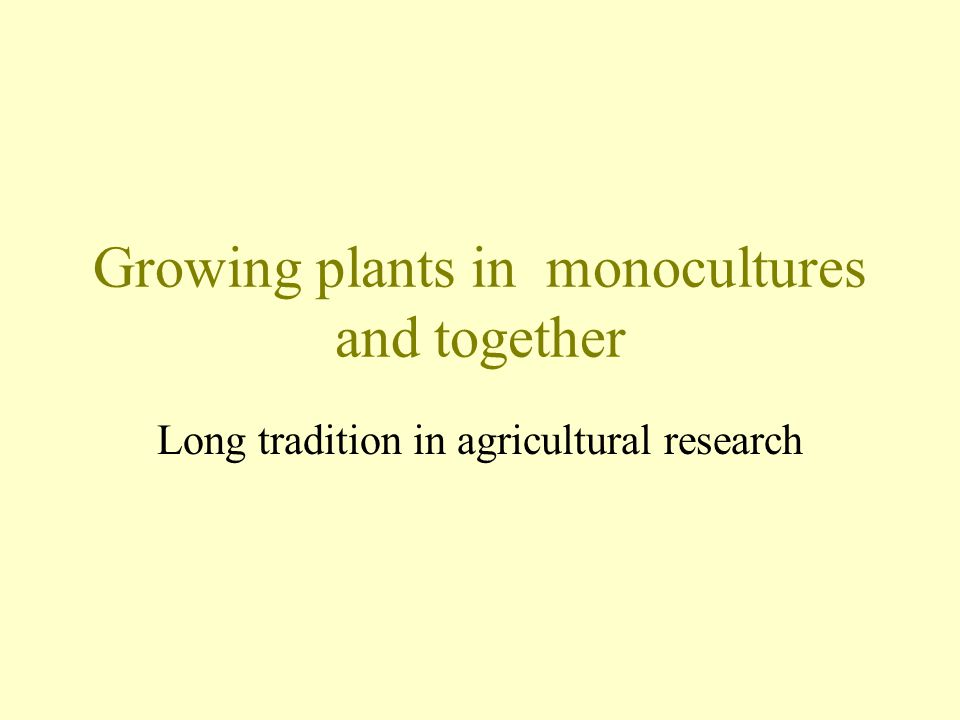Growing plants in monocultures and together