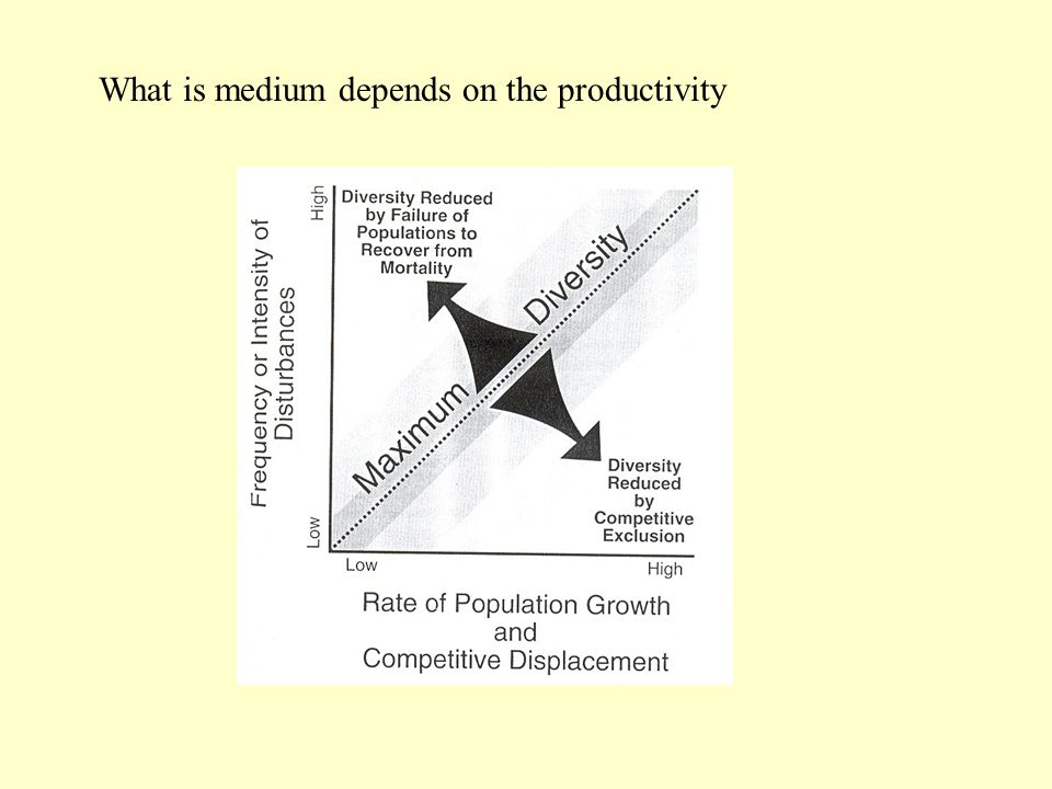 What is medium depends on the productivity