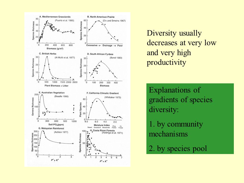 Diversity usually decreases at very low and very high productivity