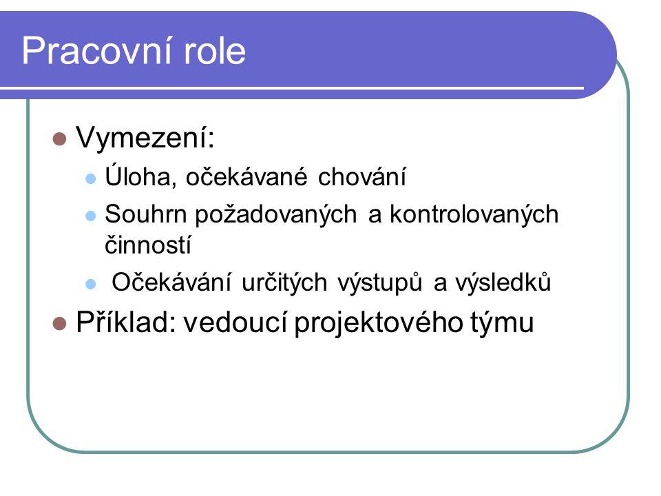 Pracovní role Vymezení: Příklad: vedoucí projektového týmu