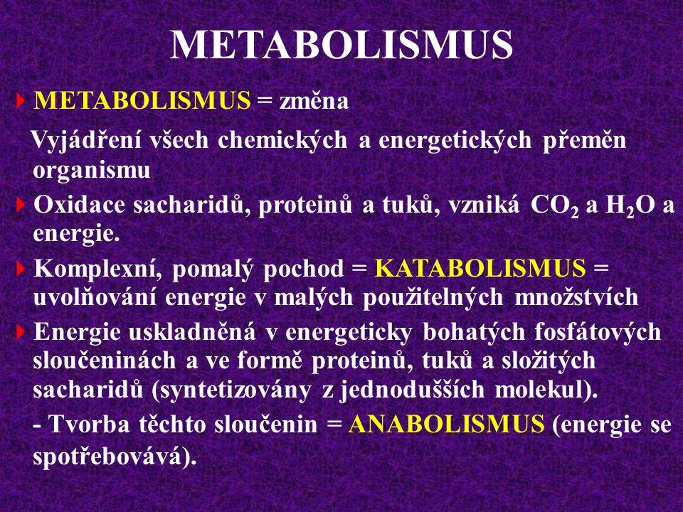 METABOLISMUS METABOLISMUS = změna. Vyjádření všech chemických a energetických přeměn organismu.