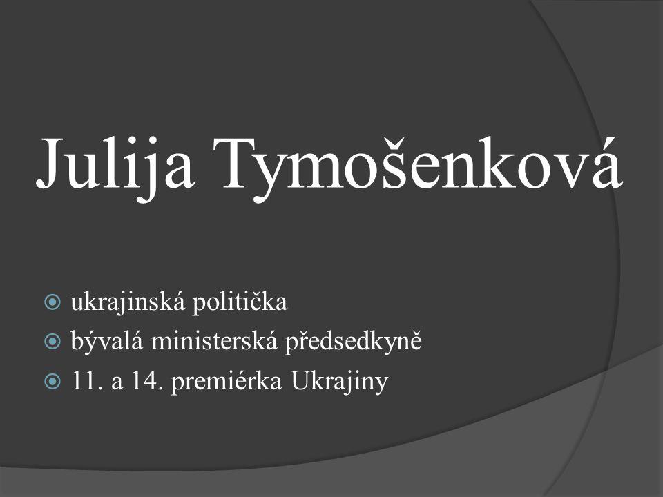 Julija Tymošenková ukrajinská politička bývalá ministerská předsedkyně