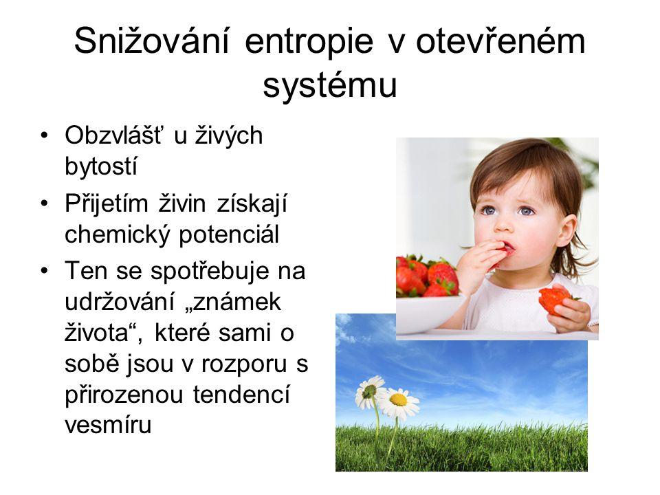 Snižování entropie v otevřeném systému