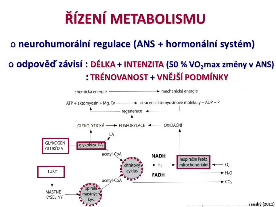 ŘÍZENÍ METABOLISMU neurohumorální regulace (ANS + hormonální systém)