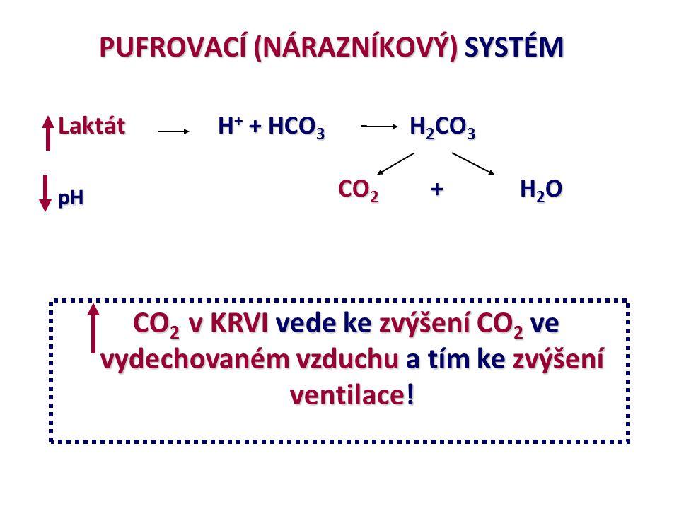pH CO2 + H2O PUFROVACÍ (NÁRAZNÍKOVÝ) SYSTÉM