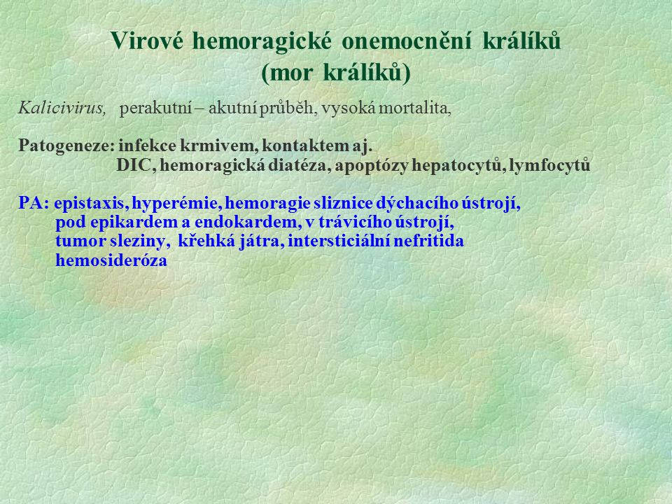 Virové hemoragické onemocnění králíků (mor králíků)