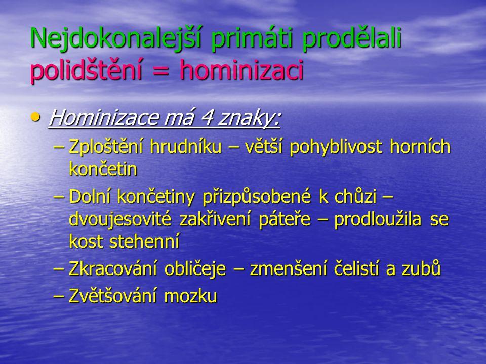 Nejdokonalejší primáti prodělali polidštění = hominizaci