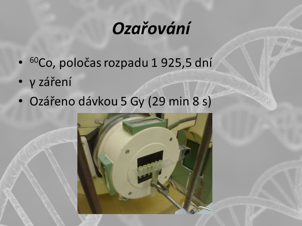 Ozařování 60Co, poločas rozpadu 1 925,5 dní γ záření