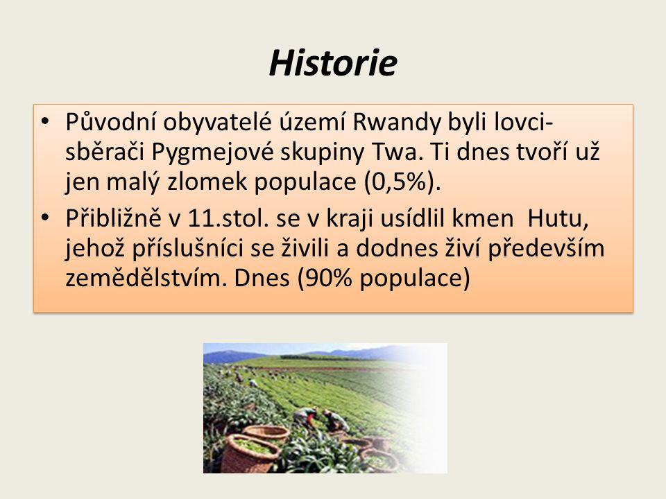 Historie Původní obyvatelé území Rwandy byli lovci-sběrači Pygmejové skupiny Twa. Ti dnes tvoří už jen malý zlomek populace (0,5%).