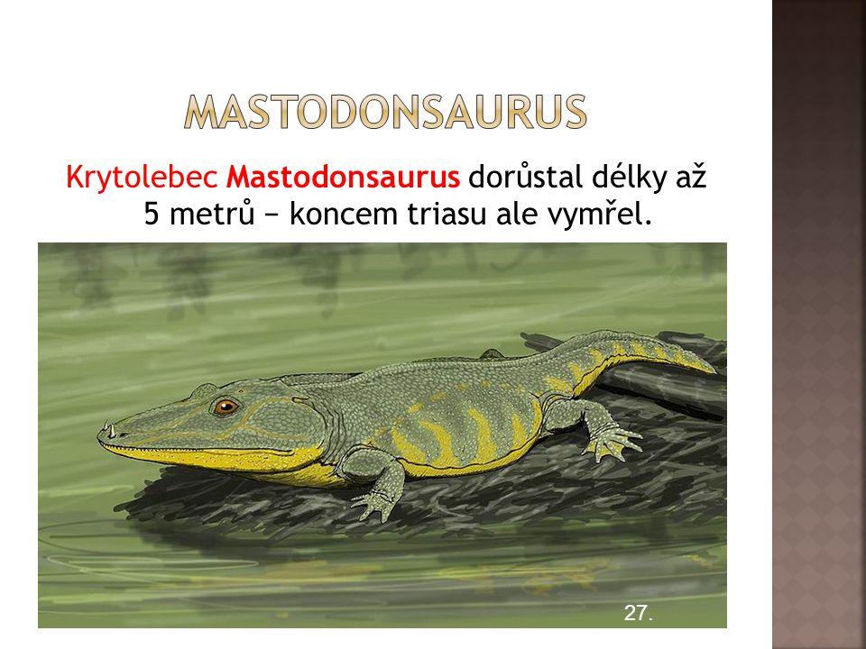 mastodonsaurus Krytolebec Mastodonsaurus dorůstal délky až 5 metrů − koncem triasu ale vymřel.