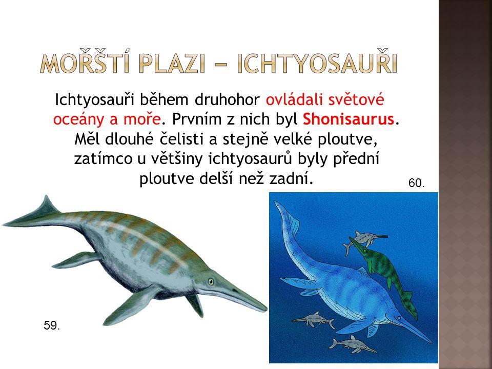 mořští plazi − ichtyosauři