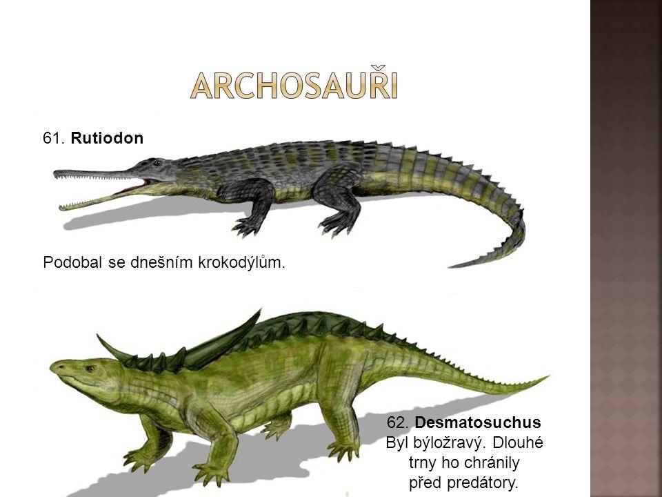 archosauři 61. Rutiodon Podobal se dnešním krokodýlům.