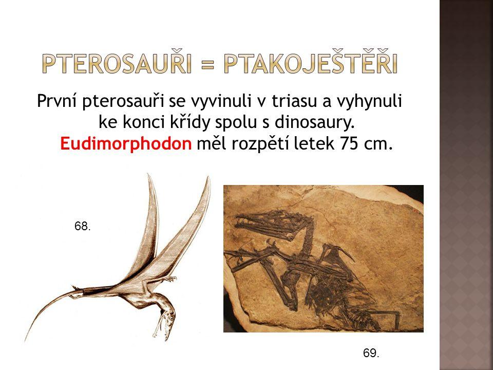 Pterosauři = ptakoještěři