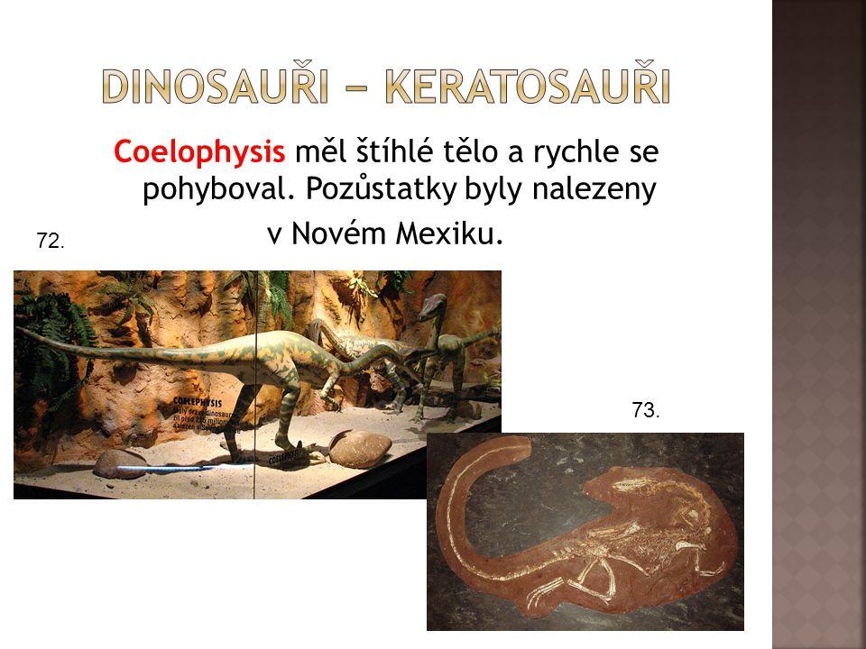 Dinosauři − keratosauři