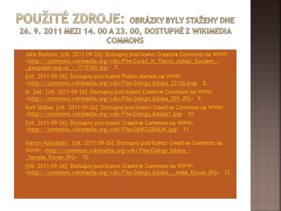 Použité zdroje: Obrázky byly staženy dne 26. 9. 2011 mezi 14. 00 a 23