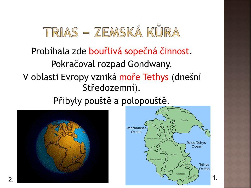 Trias − zemská kůra
