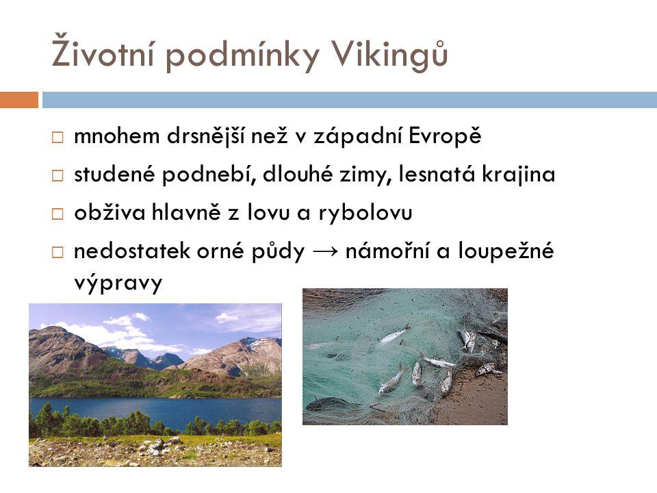 Životní podmínky Vikingů