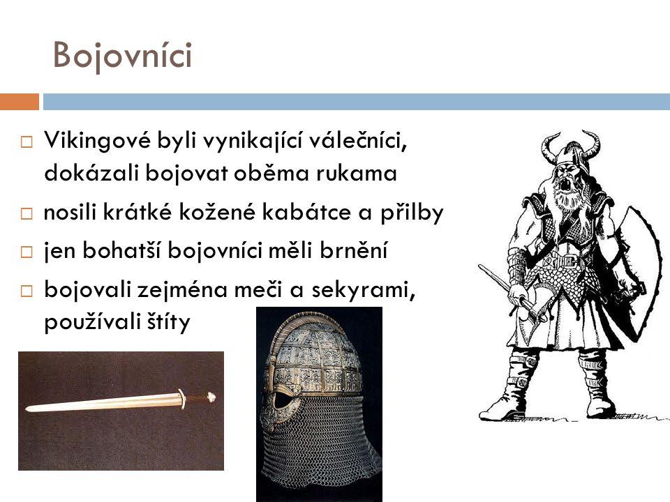 Bojovníci Vikingové byli vynikající válečníci, dokázali bojovat oběma rukama. nosili krátké kožené kabátce a přilby.