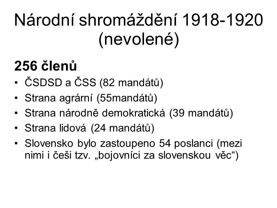 Národní shromáždění 1918-1920 (nevolené)