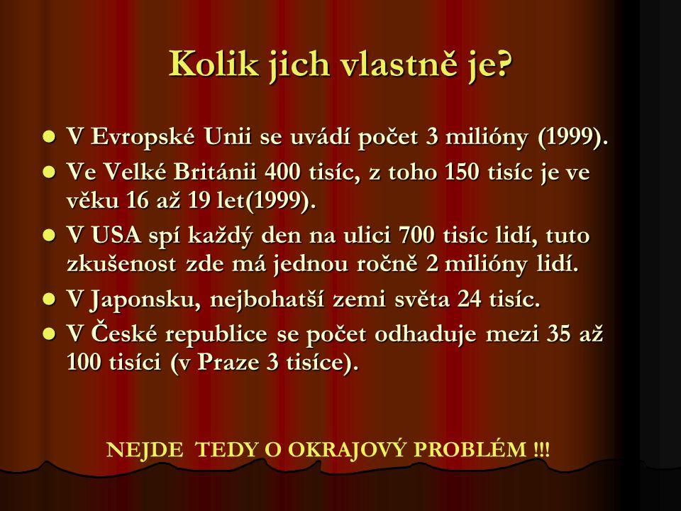 Kolik jich vlastně je V Evropské Unii se uvádí počet 3 milióny (1999). Ve Velké Británii 400 tisíc, z toho 150 tisíc je ve věku 16 až 19 let(1999).