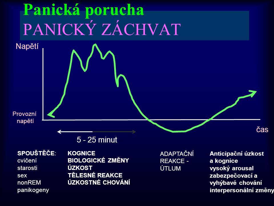 Panická porucha PANICKÝ ZÁCHVAT