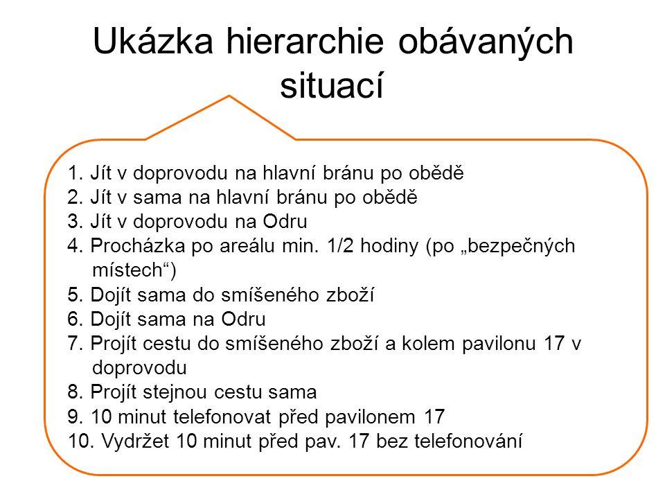 Ukázka hierarchie obávaných situací
