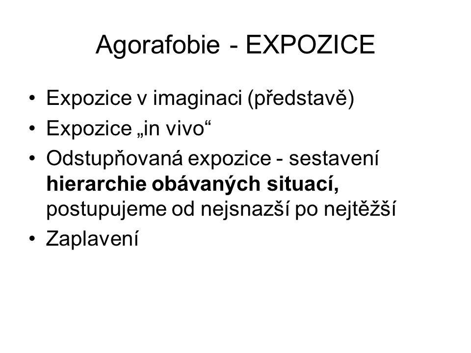 Agorafobie - EXPOZICE Expozice v imaginaci (představě)